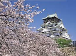 大阪のおすすめ夜桜5か所紹介