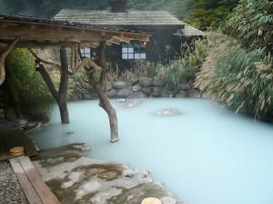 「新潟 温泉